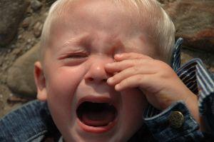przedszkole płacz