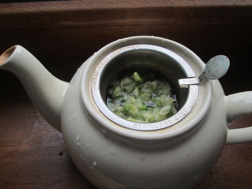 Herbatka akacjowa.
