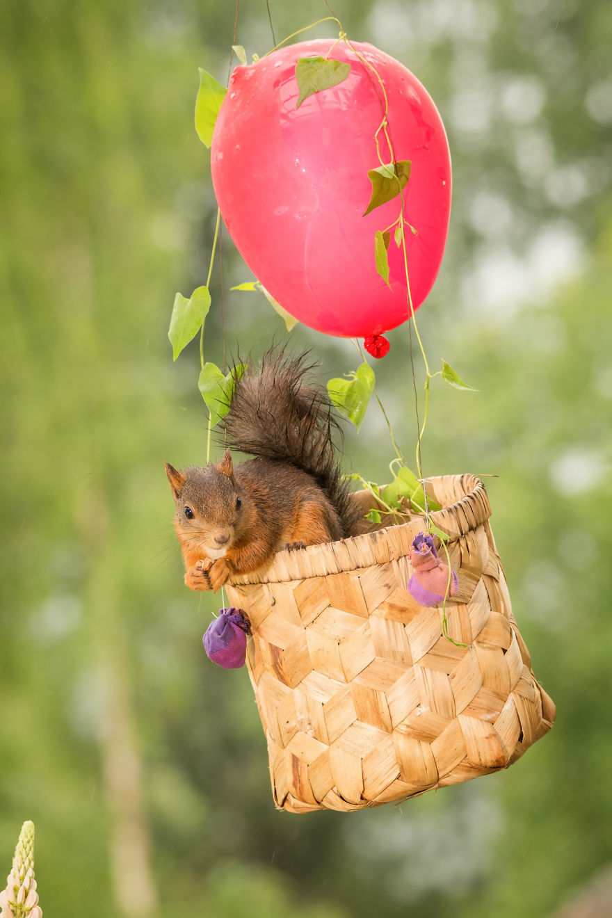 i-shoot-squirrels-in-my-backyard-and-i-can-almost-make-a-living-from-what-i-love-6__8801