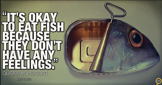 Ryby głosu nie mają...